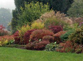 Wojsławice – kolory jesieni