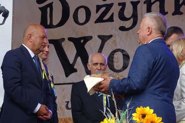 Lewin Brzeski: Opolskie korony