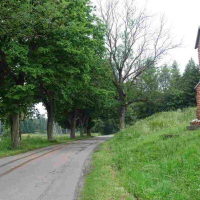 Park Kulturowy – Warmińska Droga Krajobrazowa: Jak pięknie szumią drzewa