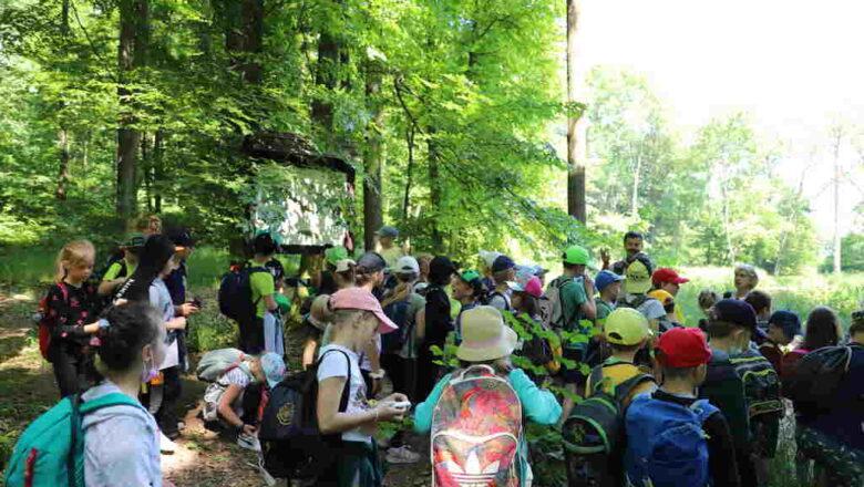 Starostwo Powiatowe we Wrocławiu: Edukacja w zgodzie z naturą